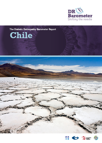 Cover page for Chile Study Report. For accessible PDF version of full report click the image.