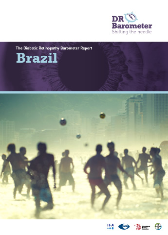 Cover page for Brazil Study Report. For accessible PDF version of full report click the image.