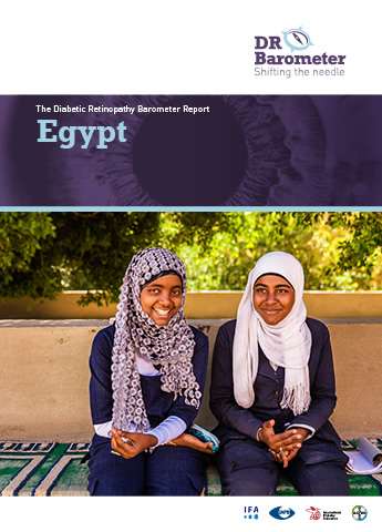 Cover page for Egypt Study Report. For accessible PDF version of full report click the image.