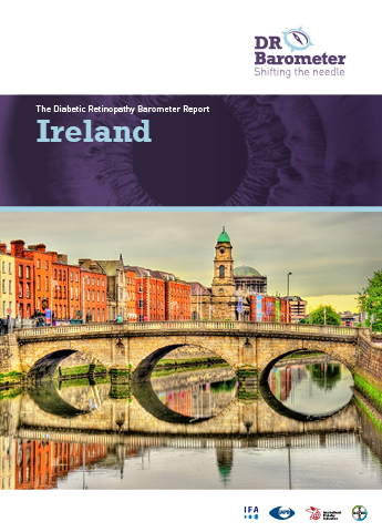 Cover page for Ireland Study Report. For accessible PDF version of full report click the image.