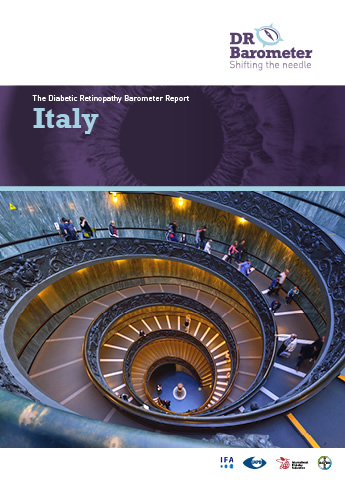 Cover page for Italy Study Report. For accessible PDF version of full report click the image.