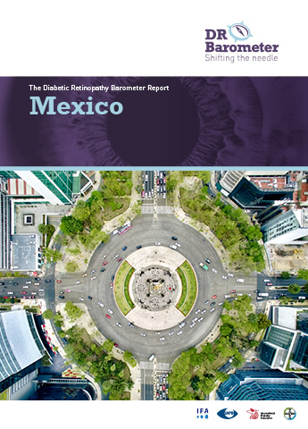 Cover page for Mexico Study Report. For accessible PDF version of full report click the image.