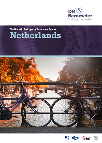 Cover page for Netherlands Study Report. For accessible PDF version of full report click the image.