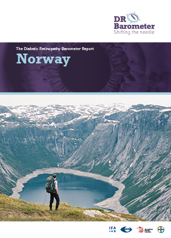 Cover page for Norway Study Report. For accessible PDF version of full report click the image.