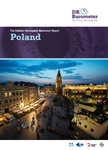 Cover page for Poland Study Report. For accessible PDF version of full report click the image.