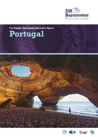 Cover page for Portugal Study Report. For accessible PDF version of full report click the image.