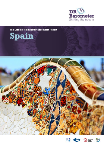 Cover page for Spain Study Report. For accessible PDF version of full report click the image.