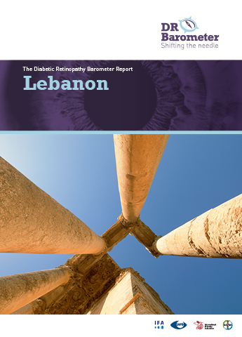 Cover page for Lebanon Study Report. For accessible PDF version of full report click the image.